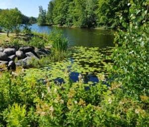 Natur, entspannen, Ankommen im Jetzt