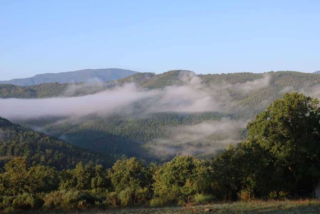 Nebelschwaden Toscana